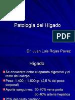 Patología Del Hígado