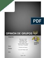 Opinion de Grupos