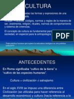 CULTURA GENERALIDADES (2)