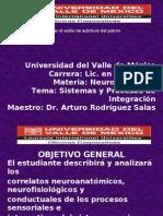 SISTEMAS Y PROCESOS DE INTEGRACIÓN (A)