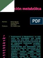 integracin_metablica_bioqca