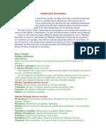 Clasificación Taxonómica entomologia