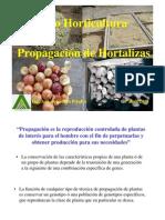 Propagación  de Hortalizas