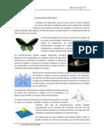 geometria_transformaciones