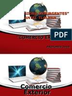 Introduccion Al Comercio Exterior Dia