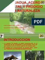 La Guadua, Acero Vegetal y Prodigio De