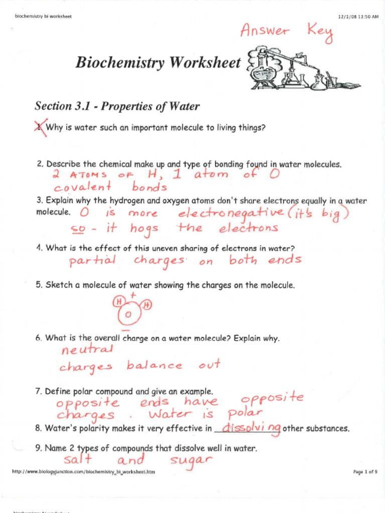 2 2 Properties Of Water Worksheet Answers - Breadandhearth