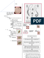 Parasitology-Lec 2 Nematodes 1