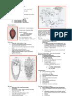 Parasitology-Lec 6 Liver Flukes (Kat)