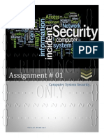 Computer System Security-Assignment No. 01