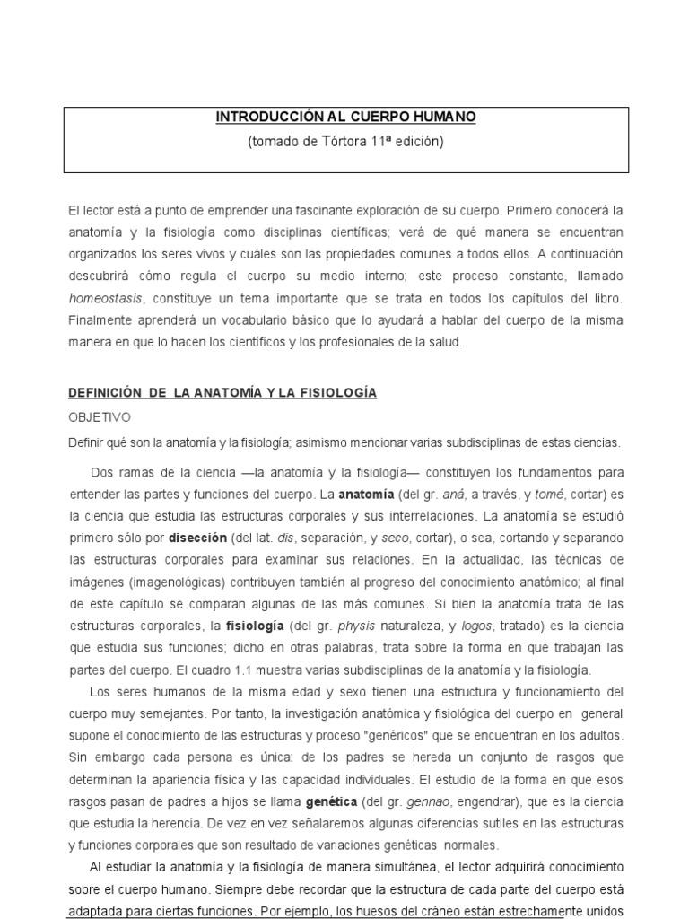 Lujo Become Anatomía Y Fisiología Capítulo 3 Adorno - Imágenes de ...