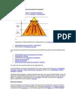 La Administración por Áreas funcionales de la empresa