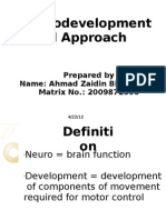 AHMAD ZAIDIN_Neurodevelopmental Approach