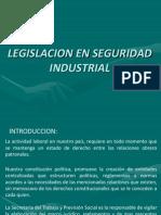 ion en Seguridad Industrial