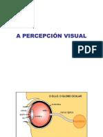 A PERCEPCIÓN VISUAL