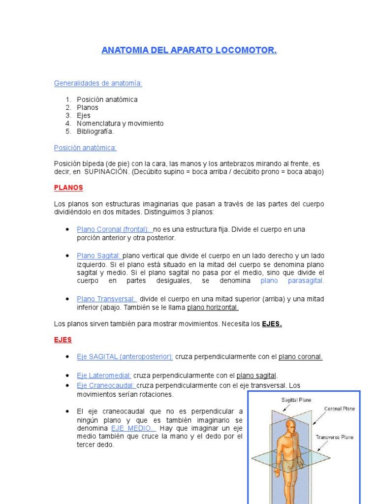 Anatomia Del Aparato Locomotor -Articulaciones, Ejes y Planos-