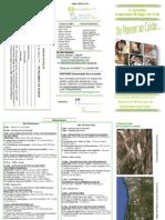 Programa Definitivo I I Jornadas Do Planear Ao Cuidar2011
