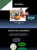 Bioquimica Moleculas de La Vida