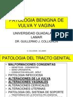 23-patologiabenigna-malignavulvayvagina-101020105638-phpapp01