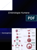 Embriologia - A1