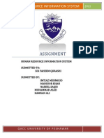 Human Resource Information Systems 2