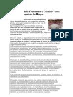 bioOologia articuloz