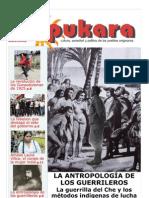 Pukara-55