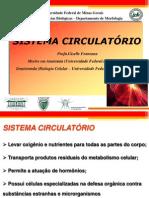 Sistema+Circulatório+(+UFMG)