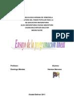 Ensayo de La Programacion Lineal 1.2
