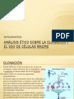 CELULAS MADRE Y CLONACIÓN
