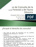 Presentacion Consulta Ley Forestal