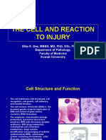 Lecture 3 - The Cell and Reaction to Injury - 2 Sep 2006