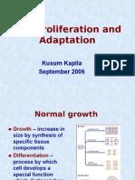 Lecture 11 - Kapila - Adaptations 23 Sep 2006