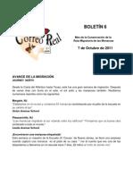 Boletín 6 de correo real de las mariposas monarca. Otoño 2011