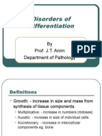 Lecture 34 - Disorders of Differentiation