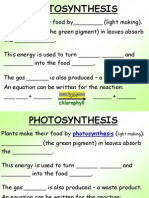 PPT Photosynthesis Summary Paragraph