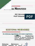 Turma 201E - Sistema Nervoso Introdução