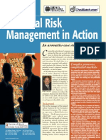 Financial Risk Management in Action