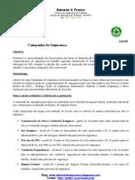 Seguranca +ProjetoJan09+Vf