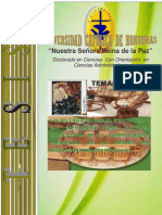 Tesis Doctoral, Factores de Competitividad Kenneth Fonseca