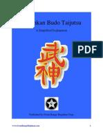 Bujinkan-Budo-Taijutsu