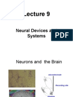 Lecture 9 Neural