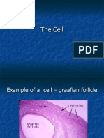 The Cell Histology