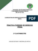 Practica Forense de Derecho Penal