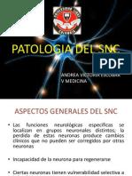 EXPO SNC