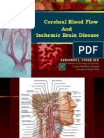 Cerebral Blood Flow; Stroke