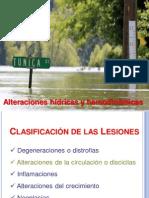 Alteraciones Hidricas y Hemodinamicas Hiperemia y Congestion