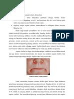 Angular Cheilitis Words