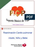 RCP 2006