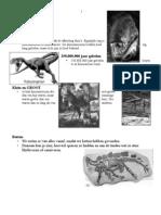Dinosauruslessen-antw